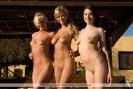 Fine Naked Babe Trio Outdoors - pics 10