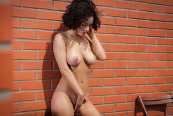Busty Beauty Pammie Lee by the Wall - pics 09