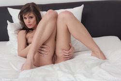 Sweet Little Caprice - Jam Session - pics 10